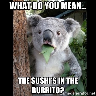 Koala can't believe it - what do you mean... the sushi's in the burrito?