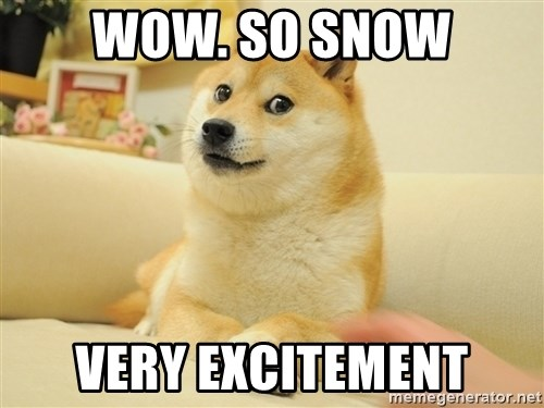 so doge - wow. so snow very excitement