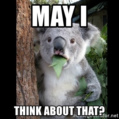 Koala can't believe it - May I Think about that?