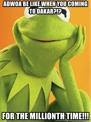 Kermit the frog - Adwoa be like When you coming to Dakar?!? For the millionth time!!!