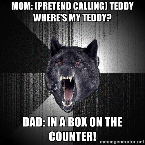 Insanity Wolf - Mom: (pretend calling) teddy where's my teddy? dad: in a box on the counter!