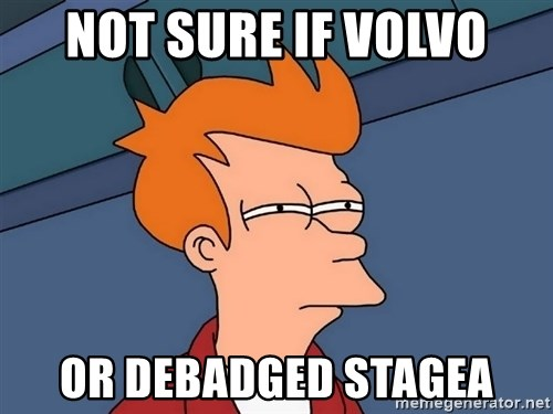 Futurama Fry - NOT SURE IF VOLVO OR DEBADGED STAGEA
