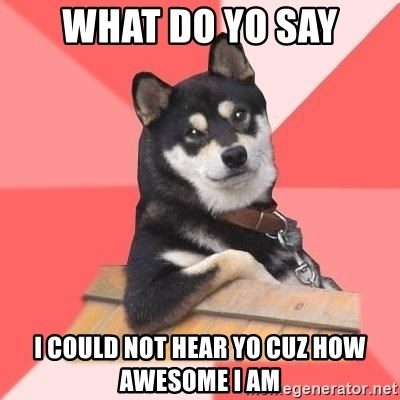 Cool Dog - what do yo say i could not hear yo cuz how AWESOME I am