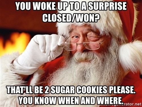 Capitalist Santa - you woke up to a surprise closed/won? that'll be 2 sugar cookies please.  you know when and where.