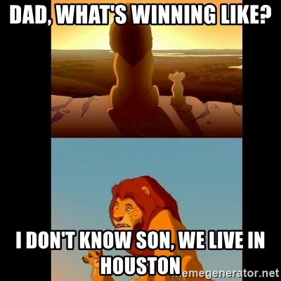 Lion King Shadowy Place - Dad, what's winning like? i don't know son, we live in Houston