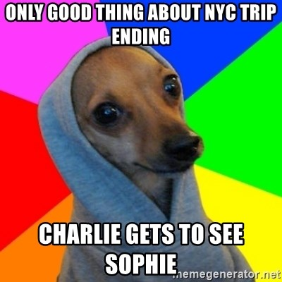 Good Guy Greg's dog - Only good thing about NYC trip ending Charlie gets to see Sophie