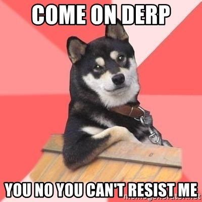 Cool Dog - come on derp  you no you can't resist me