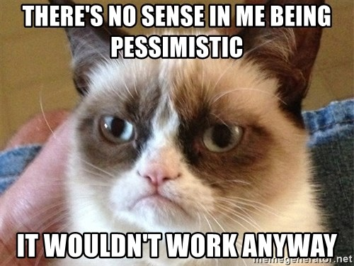 Angry Cat Meme - There's no sense in me being pessimistic It wouldn't work anyway