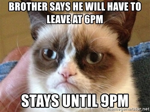 Angry Cat Meme - brother says he will have to leave at 6pm stays until 9pm