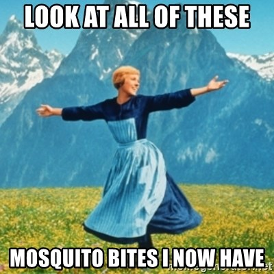Sound Of Music Lady - Look at all of these Mosquito Bites I NOw HAVE