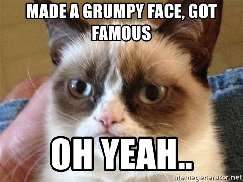 Angry Cat Meme - Made a grumpy face, got famous Oh yeah..