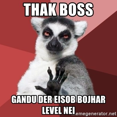 Chill Out Lemur - Thak boss gandu der eisob bojhar level nei