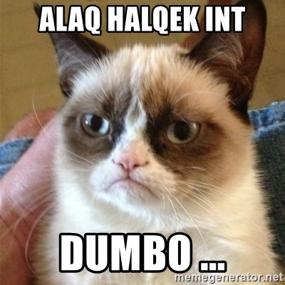 Grumpy Cat  - Alaq Halqek int dumbo ...