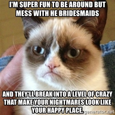 Grumpy Cat  - I'm super fun to be around but mess with he bridesmaids  And they'll break into a level of crazy that make your nightmares look like your happy place.
