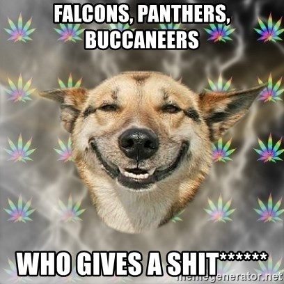 Stoner Dog - Falcons, Panthers, Buccaneers Who gives a shit******