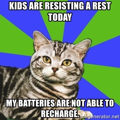 Introvert Cat - Kids are resisting a rest today My batteries are NOT able to recharge.