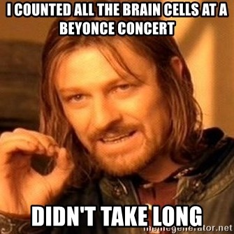 One Does Not Simply - I counted all the brain cells at a beyonce concert didn't take long
