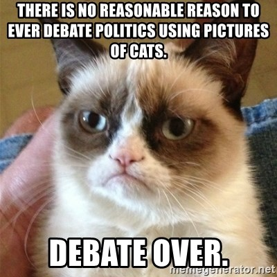 Grumpy Cat  - There is no reasonable reason to ever debate politics using pictures of cats. Debate over.