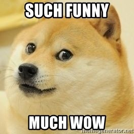 wow such doge1 - such funny much wow