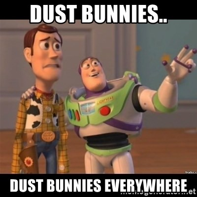 Buzz lightyear meme fixd - DUST BUNNIES.. DUST BUNNIES EVERYWHERE