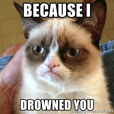 Grumpy Cat  - BECAUSE I DROWNED YOU
