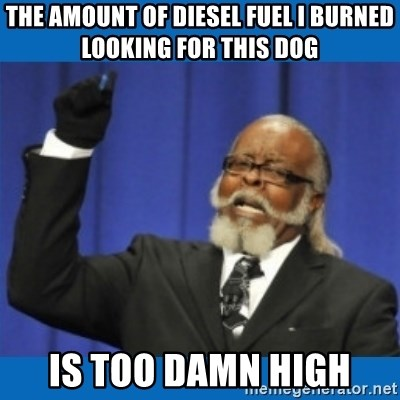 Too damn high - The amount of diesel fuel I burned looking for this dog Is too damn high