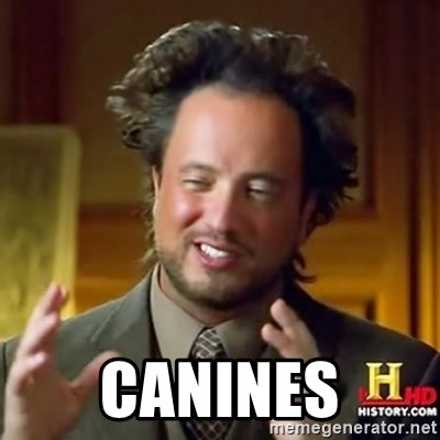 ancient alien guy -  CANINES