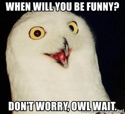 O Rly Owl - When will you be funny? Don't worry, owl wait.
