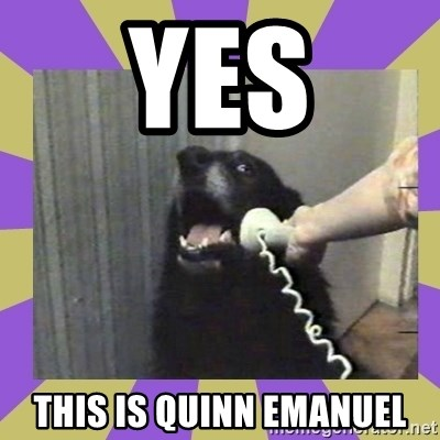 Yes, this is dog! - Yes This is Quinn Emanuel