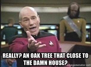 Captain Picard -  Really? An oak tree that close to the damn house?