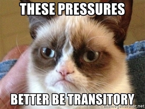 Angry Cat Meme - These pressures better be transitory