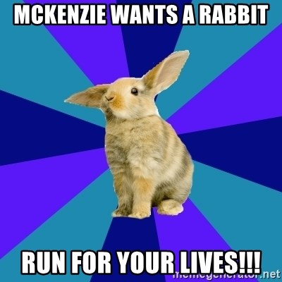Reception Rabbit - mckenzie wants a rabbit run for your lives!!!