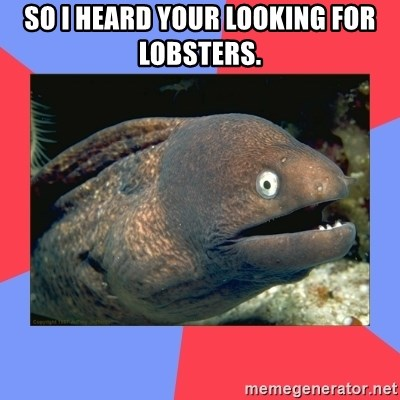 Bad Joke Eels - So I heard your looking for Lobsters.