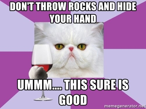 Art History Major Cat - don't throw rocks and hide your hand  ummm.... this sure is good