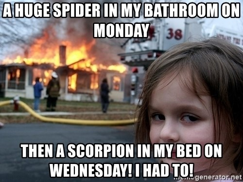 Disaster Girl - A huge spider in my bathroom on Monday Then a scorpion in my bed on Wednesday! I had to!