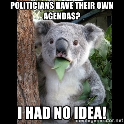 Koala can't believe it - Politicians have their own agendas? I had no idea!