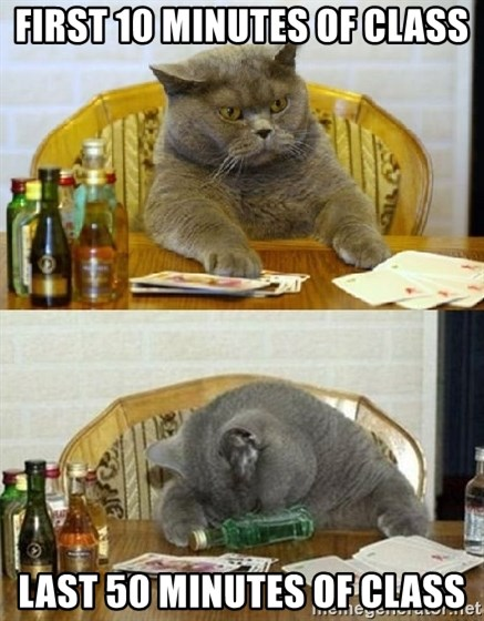 Poker Cat - First 10 Minutes of class Last 50 minutes of class