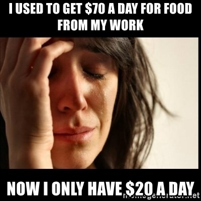 First World Problems - I USED TO GET $70 A DAY FOR FOOD FROM MY WORK NOW I ONLY HAVE $20 A DAY