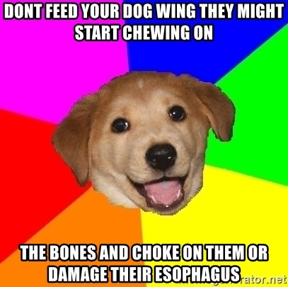Advice Dog - Dont feed your dog wing they might start chewing on the bones and choke on them or damage their Esophagus