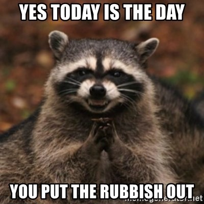 evil raccoon - yes today is the day you put the rubbish out