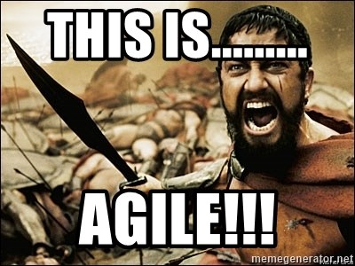 This Is Sparta Meme - THIS IS......... AGILE!!!