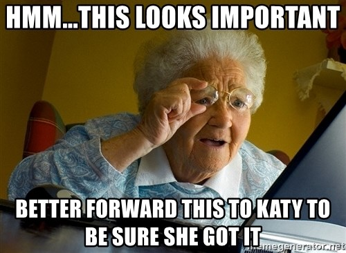 Internet Grandma Surprise - Hmm...this looks important better forward this to katy to be sure she got it