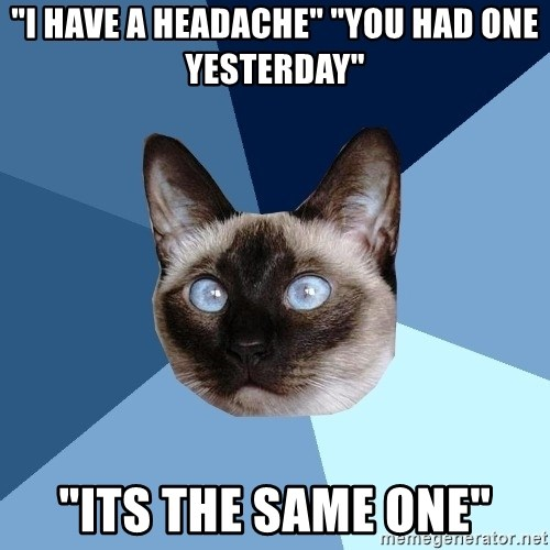 "Chronic Illness Cat - ""I have a headache"" ""you had one yesterday"" ""its the same one"""