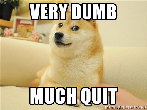 so doge - very dumb much quit