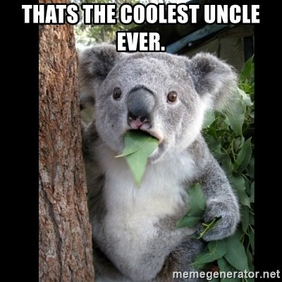 Koala can't believe it - Thats the coolest uncle ever.