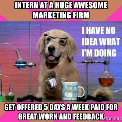 I have no idea what I'm doing dog - Intern at a huge awesome marketing firm Get offered 5 Days a week paid for great work and feedback