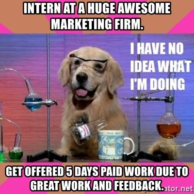 I have no idea what I'm doing dog - Intern at a Huge Awesome Marketing Firm. Get offered 5 Days paid work due to Great work and Feedback.