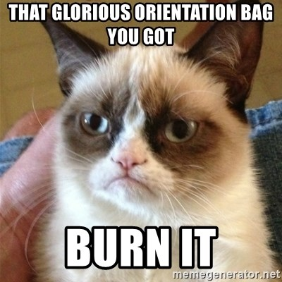 Grumpy Cat  - that glorious orientation bag you got BURN IT