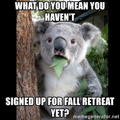 Koala can't believe it - what do you mean you haven't signed up for Fall Retreat yet?