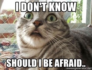 scared cat - I don't know Should I be afraid..